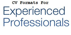 Format of a curriculum vitae for freshers